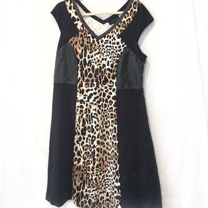 Plus size Leopard/cheetah print dress